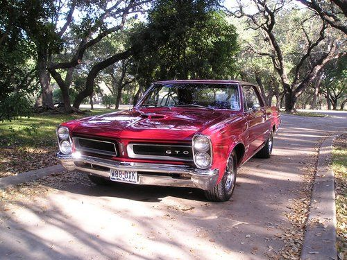 1965 pontiac gto, front view in a setting of trees